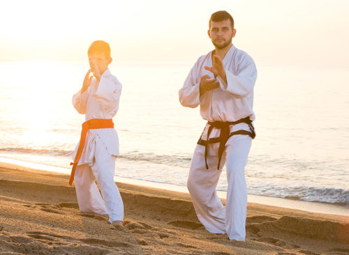 father son martial arts